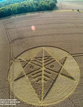 Crop Circle at Ironwell Lane, nr Stroud Green, Essex, United Kingdom. Reported 24th August  2014 Image001