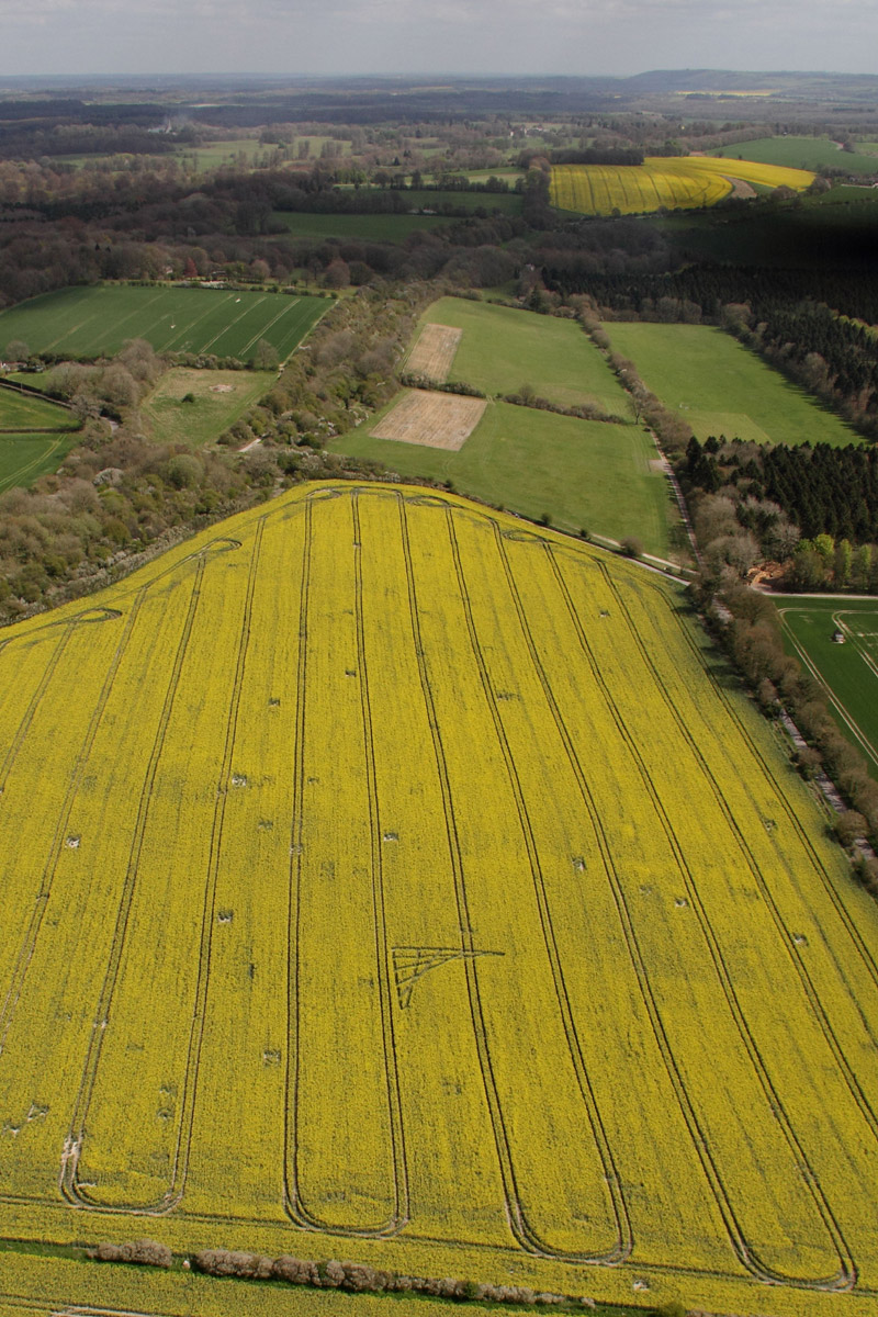 Crop Circle at Brimslade Farm, nr Wootton Rivers, Wiltshire ...