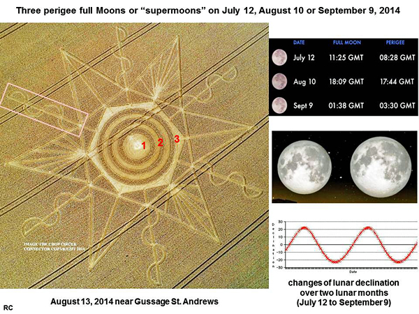 CROP CIRCLE UPDATE : CHANGES OF LUNAR DECLINATION (3 SUPERMOONS) Gussage-moon1