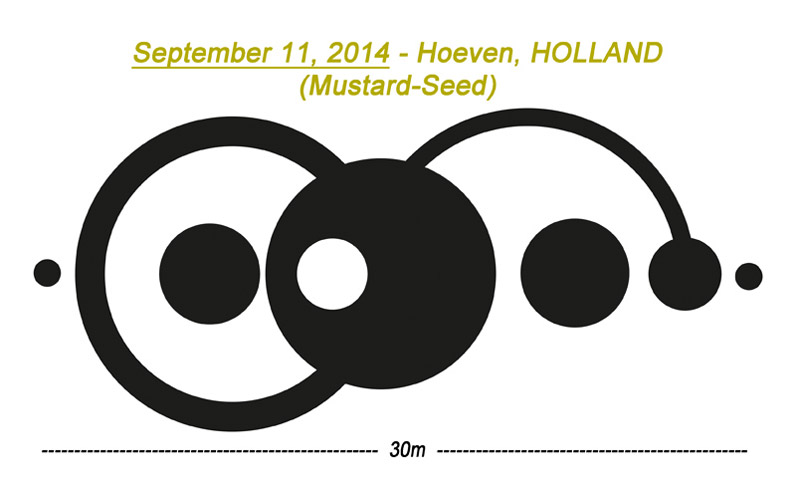 CROP CIRCLE UPDATE : MUSTARD SEED (FAITH) Edited-12