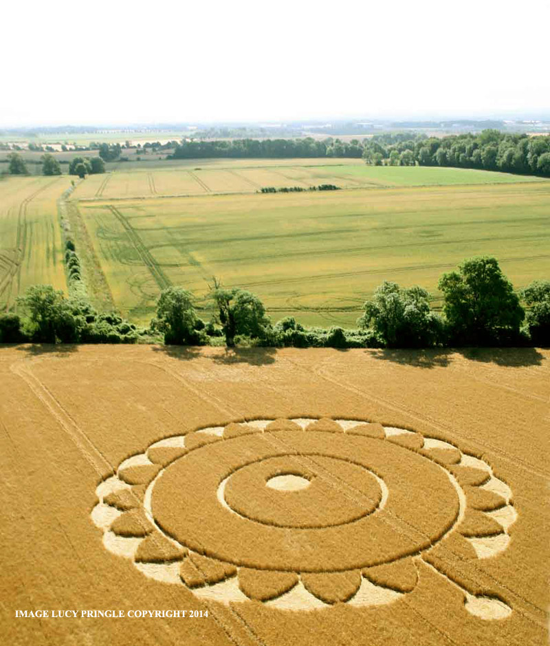 Crop Circle at Macmillan Way, nr Rodmarton, Gloucestershire ...