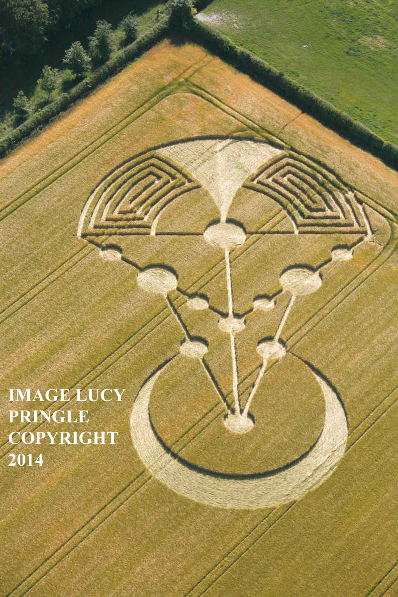 Crop Circle at Badbury Rings, nr Wimborne Minster, Dorset, United ...