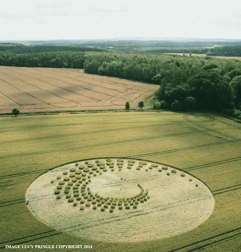 Crop Circle at Forest Hill, nr Marlborough, Wiltshire. United ...
