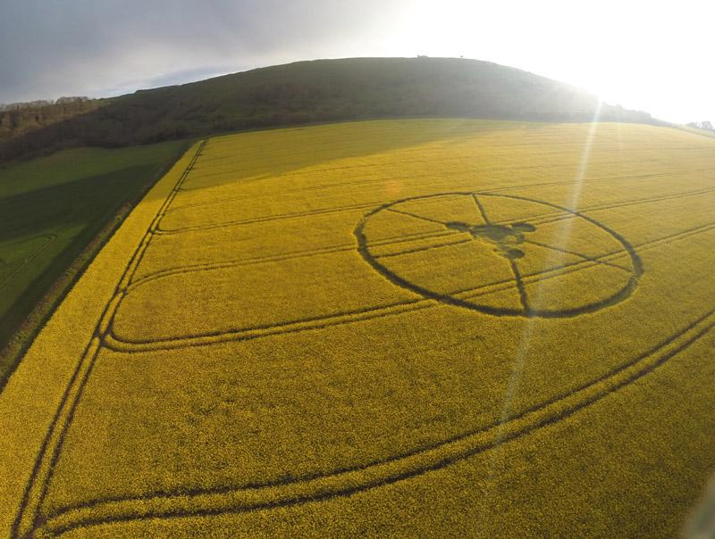 http://www.cropcircleconnector.com/2014/hambledon/Blandford-1.jpg