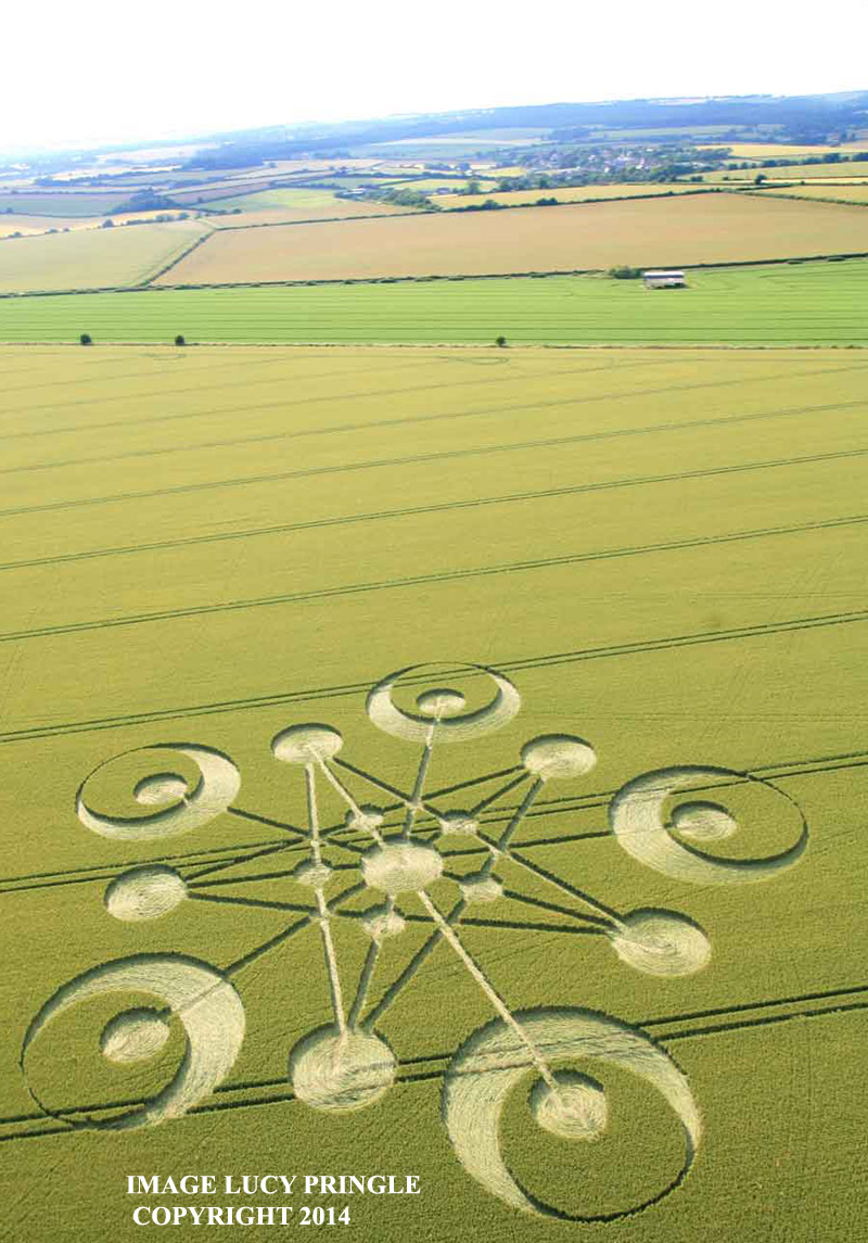 Crop Circle at Ackling Dyke, Nr Sixpenny Handley, Doreset, United ...