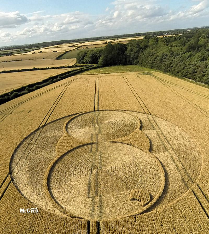 crop circles essay