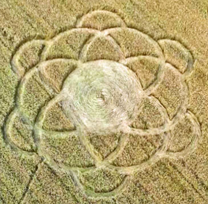 Vanzaghello Italy  City pictures : Crop Circle at Vanzaghello, near Milan, Italy. Reported 8th June 2016