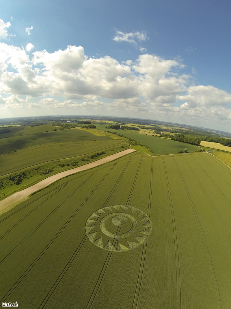 Crop Circle At Cheesefoot Head  Nr Winchester  Hampshire