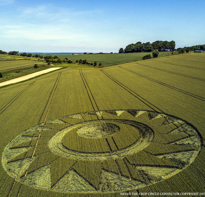 alien crop circles 2017 - photo #10