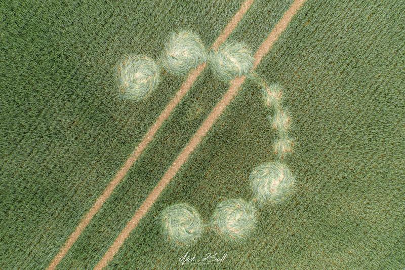 crop circles 2019 DJI_0345