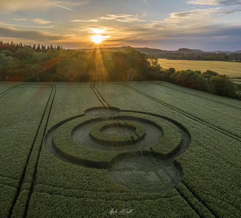 Crop Circles 2019 ~ Norridge Wood, Nr Warminster, Wiltshire DJ0265-Pano
