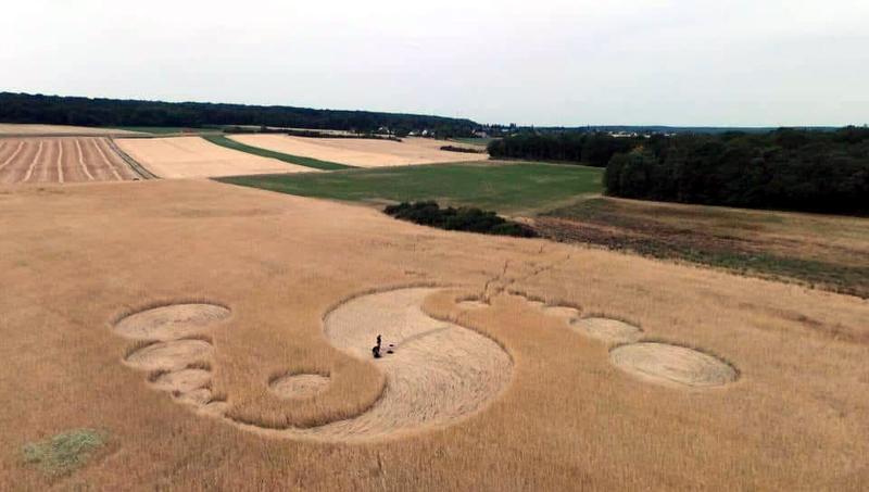 Crop Circles 2019 - Treuzy-Levelay , Seine et Marne, France France-16-7-19