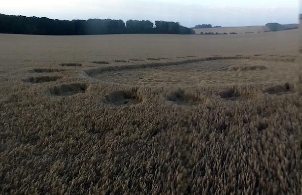 Crop Circles 2019 - Uffington Castle, Nr Ashbury, Oxfordshire Circle5
