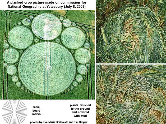 Real Crop Circles Vs Fake
